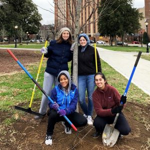 Group of four students standing by tree, smiling and holding shovels