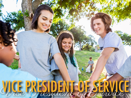 Click image to view vice president of service resources